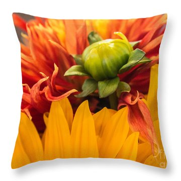 The Bud Throw Pillow by Arlene Carmel