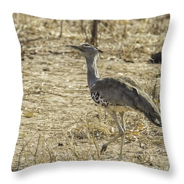 The Bustard Bird Throw Pillow