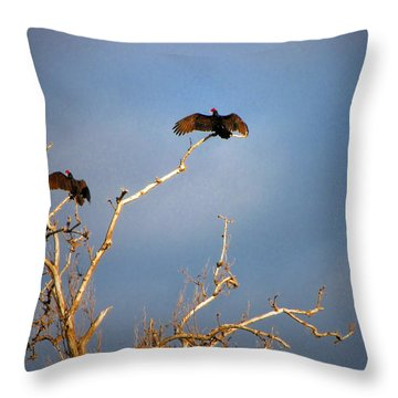 The Buzzard Roost Throw Pillow