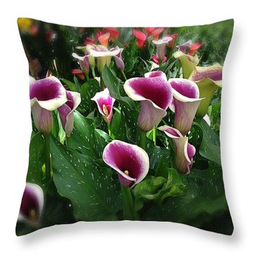 The Calla Lilies Are In Bloom Again Throw Pillow