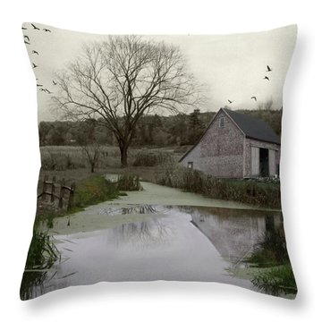 Throw Pillow featuring the photograph The Calm by Mary Lou Chmura