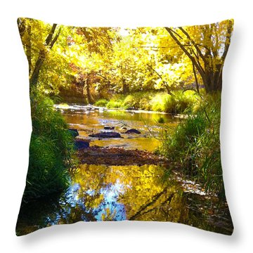 The Calm Side Throw Pillow