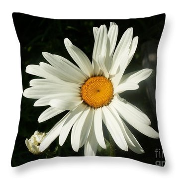 The Camomile Throw Pillow by Evgeny Pisarev