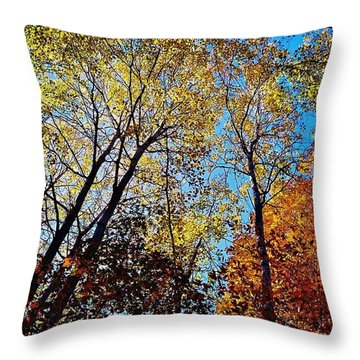 Throw Pillow featuring the photograph The Canopy by Daniel Thompson
