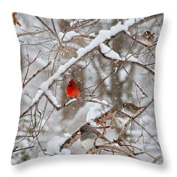 Birds In Winter Throw Pillows