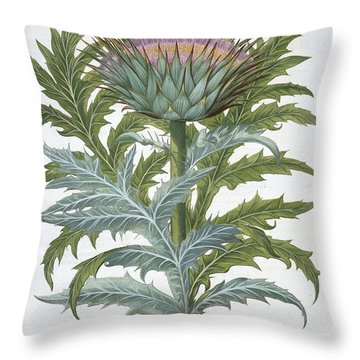 The Cardoon, From The Hortus Throw Pillow by German School