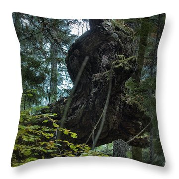 The Centaur Throw Pillow by Belinda Greb