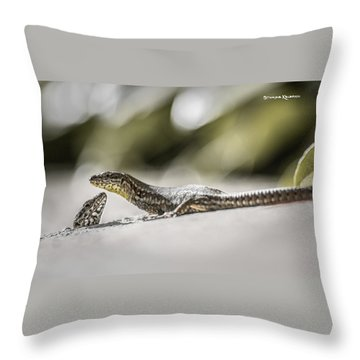 Throw Pillow featuring the photograph The Charming Lizards by Stwayne Keubrick