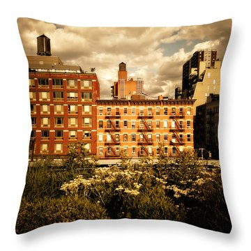 The Chelsea Skyline - High Line Park - New York City Throw Pillow by Vivienne Gucwa