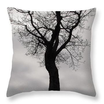 The Chill Of Spring In The Shenandoah Throw Pillow