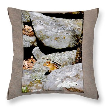 The Chipmunk Throw Pillow by Patricia Keller