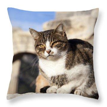 The Citizen Of Ephesus Throw Pillow
