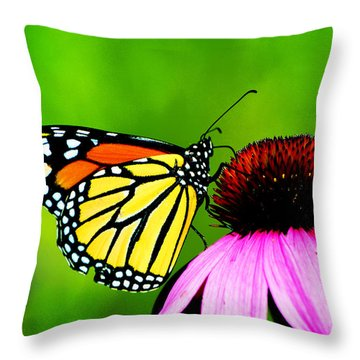 The Clarity Of Morning Light Throw Pillow