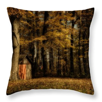 The Clearing Throw Pillow by Lois Bryan