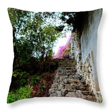 Throw Pillow featuring the photograph The Climb by Amar Sheow
