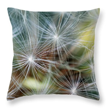 The Clock Throw Pillow by Wendy Wilton