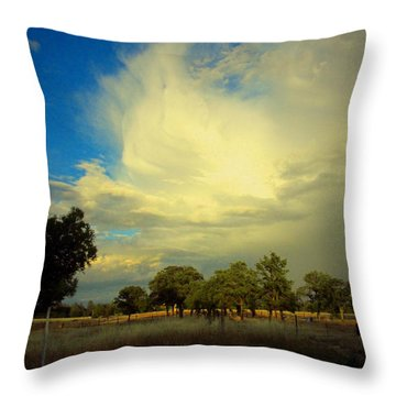 The Cloud Throw Pillow by Joyce Dickens