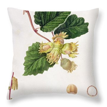 The Cob Nut Throw Pillow