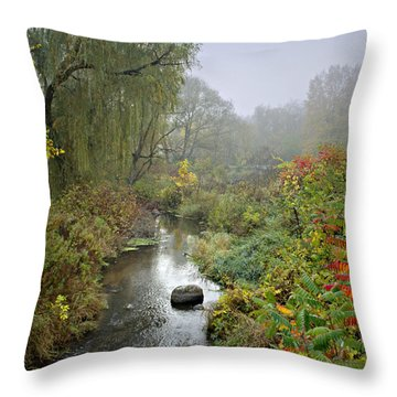 The Color Of Autumn Throw Pillow