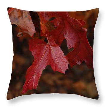 The Color Of Fall Throw Pillow by Art Hill Studios