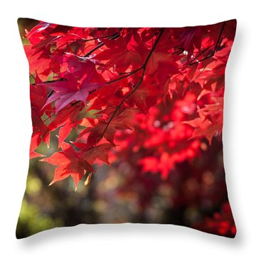 The Color Of Fall Throw Pillow by Patrice Zinck
