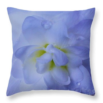 The Color Of Rain Throw Pillow