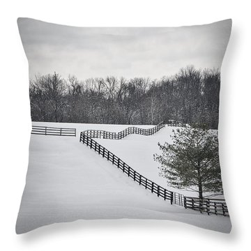 The Color Of Winter - Bw Throw Pillow by Mary Carol Story