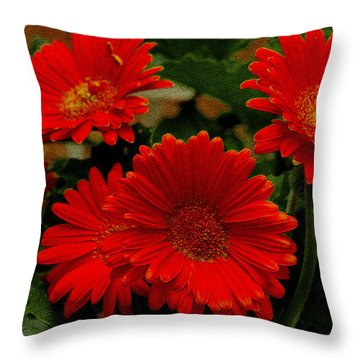 Gerbera Daisies Red Throw Pillow by James C Thomas