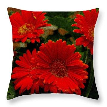 Gerbera Daisies Red Throw Pillow