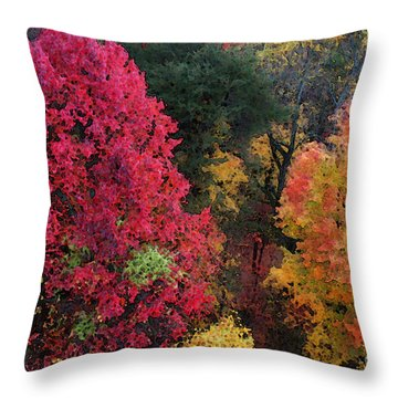 The Colors Of Fall Throw Pillow by E B Schmidt