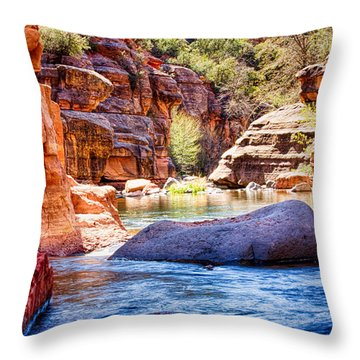 The Colors Of Oak Creek Throw Pillow by Fred Larson