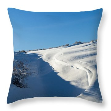 The Colors Of Snow Throw Pillow
