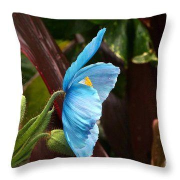The Colors Of The Himalayan Blue Poppy Throw Pillow