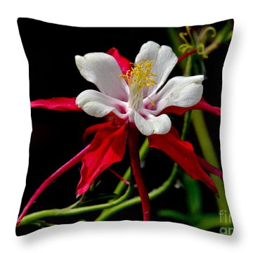 The Columbine Throw Pillow by Eve Spring