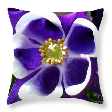 The Columbine Flower Throw Pillow by Patti Whitten