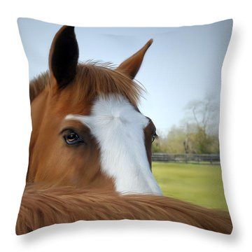 The Comfort Of A Friend Throw Pillow