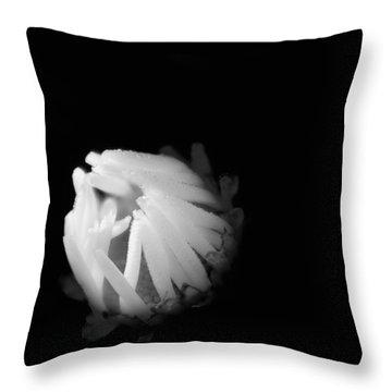 The Coming Light Throw Pillow