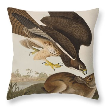 The Common Buzzard Throw Pillow