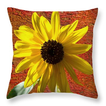 The Contrast Of Time Throw Pillow