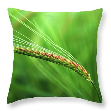 The Corn Throw Pillow
