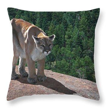 The Cougar 1 Throw Pillow by Ernie Echols
