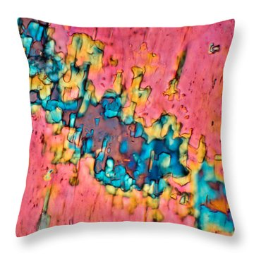 The Crack In The Wall Throw Pillow by Tom Phillips