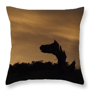 Throw Pillow featuring the photograph The Creature by Priya Ghose