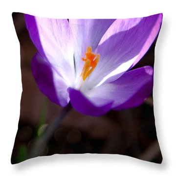 The Crocus Throw Pillow by David Patterson