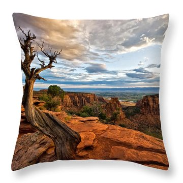The Crooked Old Tree Throw Pillow by Ronda Kimbrow