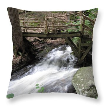 Throw Pillow featuring the photograph The Crossing by Richard Reeve