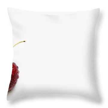 Andee Design White Throw Pillows