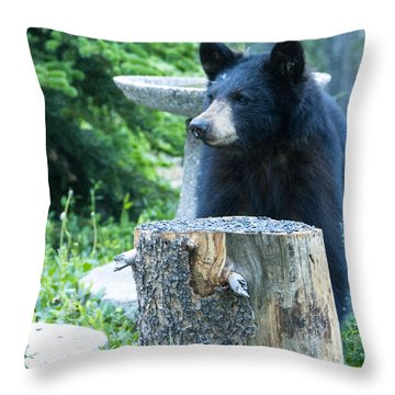 The Cub That Came For Lunch 2 Throw Pillow