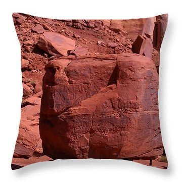 Throw Pillow featuring the photograph The Cube by Fortunate Findings Shirley Dickerson
