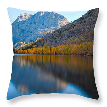 The Curves Throw Pillow
